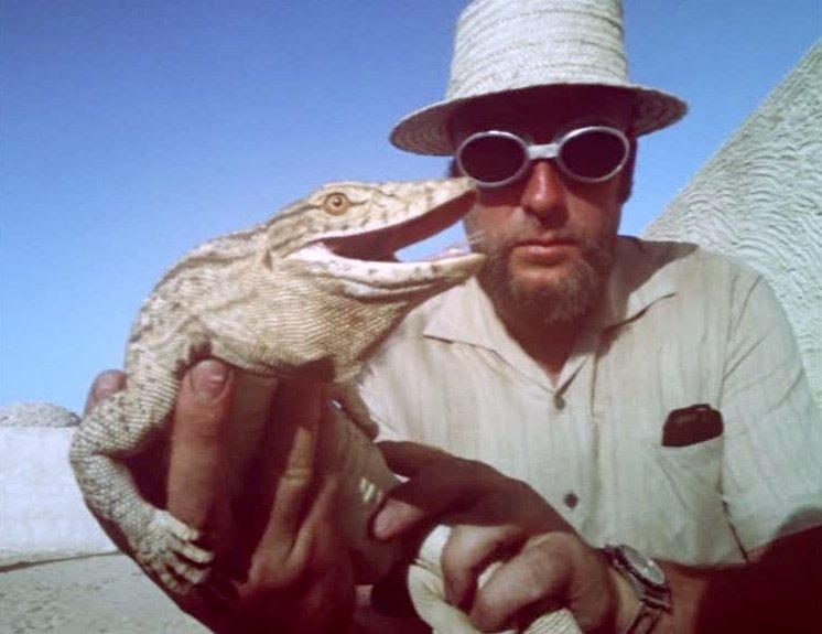 A lizard in Fata Morgana (1971)