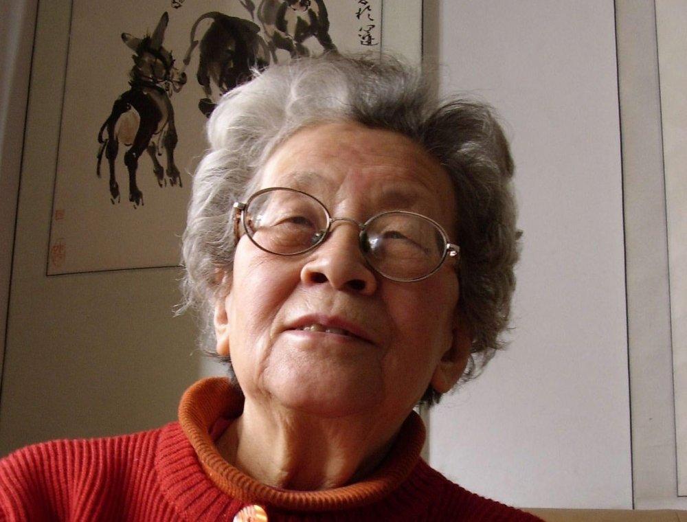 Fengming, A Chinese Memoir (He Fengming, 2007)