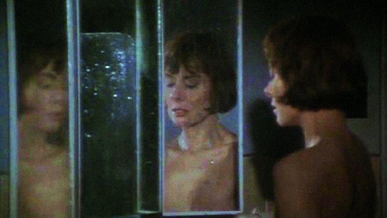 The Fox (1967)