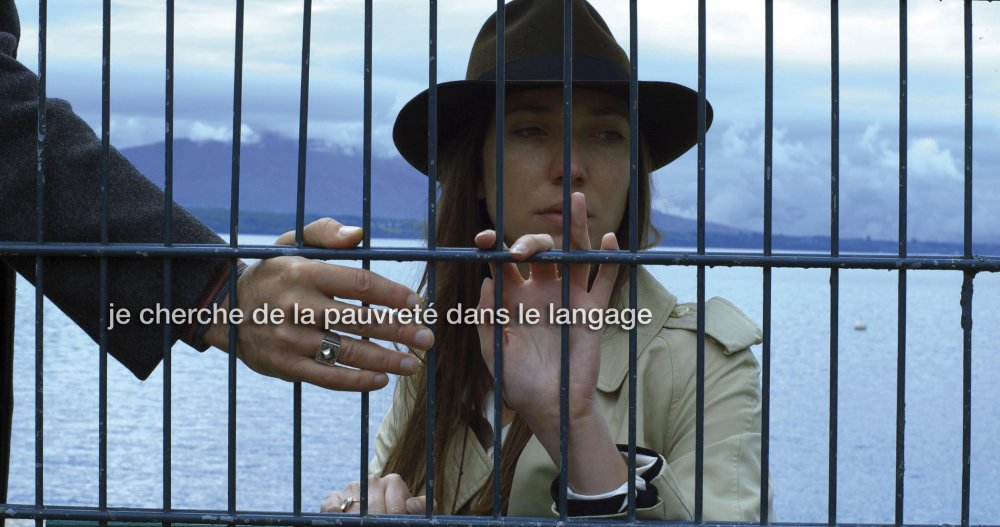 Goodbye to Language (Adieu au langage, 2014)