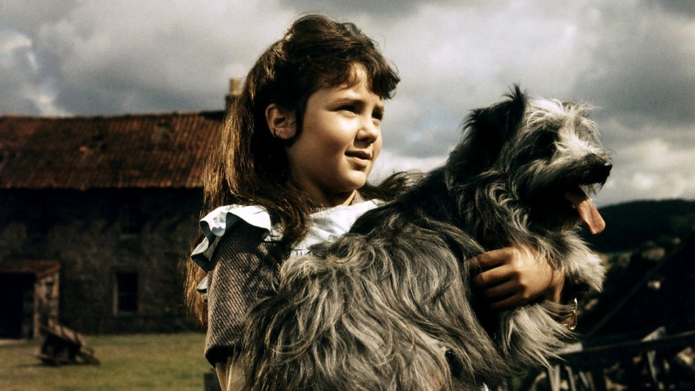 Greyfriars Bobby: the True Story of a Dog (1961)