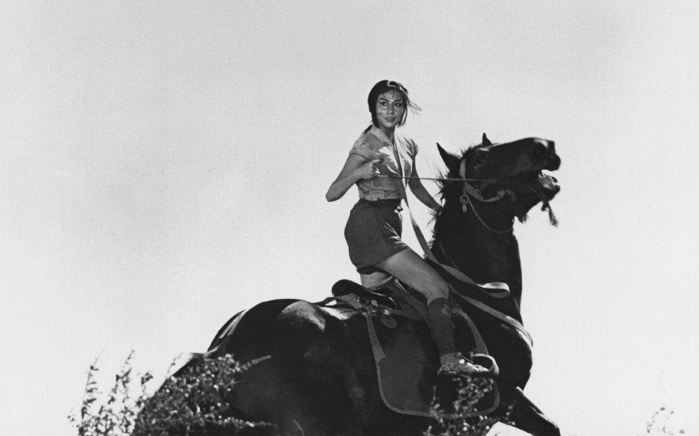 The Hidden Fortress (1958)