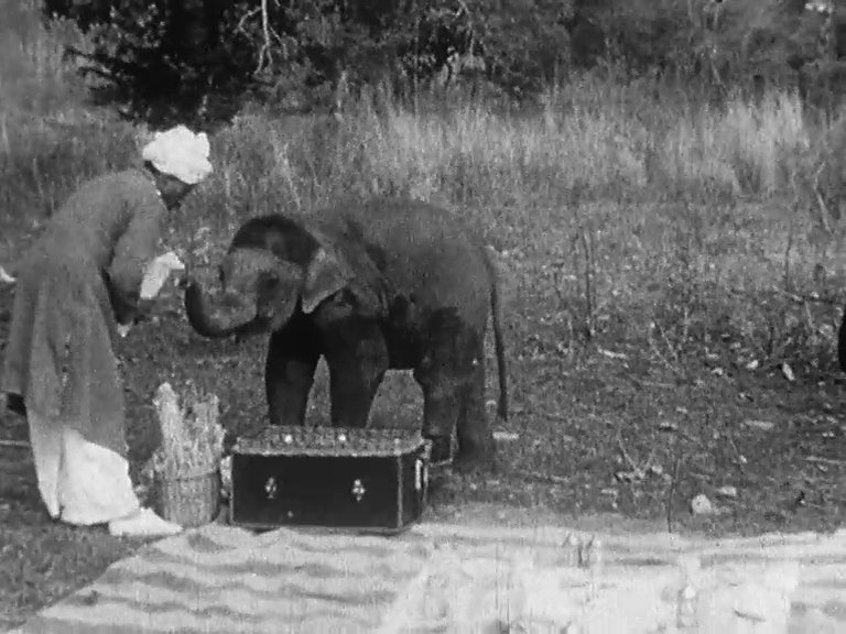 Indian Elephants in the Service of Man (1938)