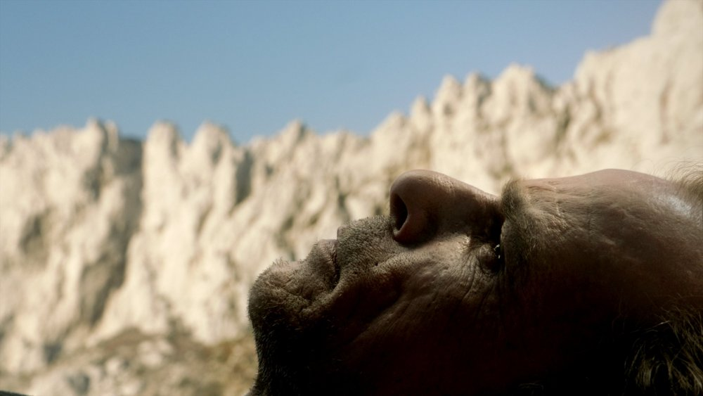 Denis Lavant and mountain