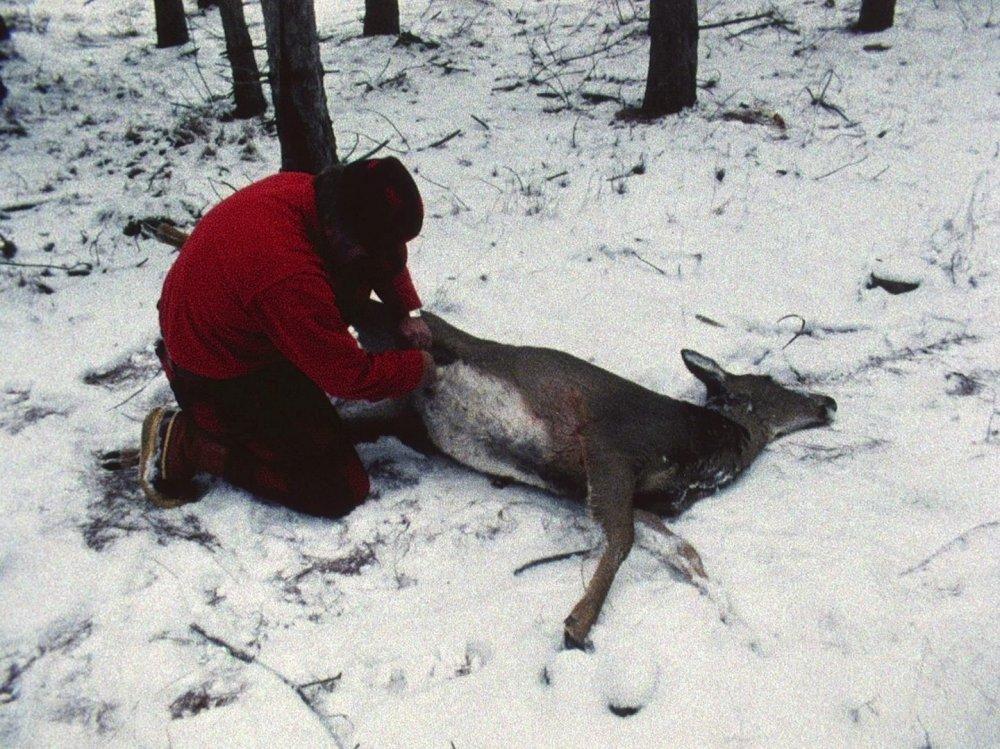 Landscape Suicide (1986)