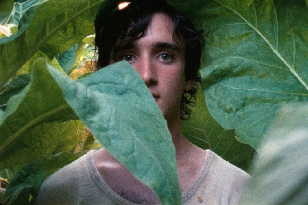 Alice Rohrwacher's Happy as Lazzaro (Lazzaro Felice) is competing for the Palme d'Or