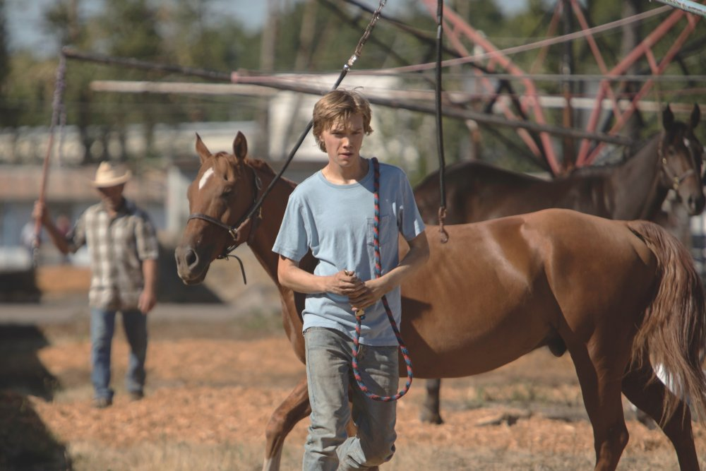 Charlie Plummer as Charley Thompson with Pete the horse in Andrew Haigh's adaptation of Lean on Pete