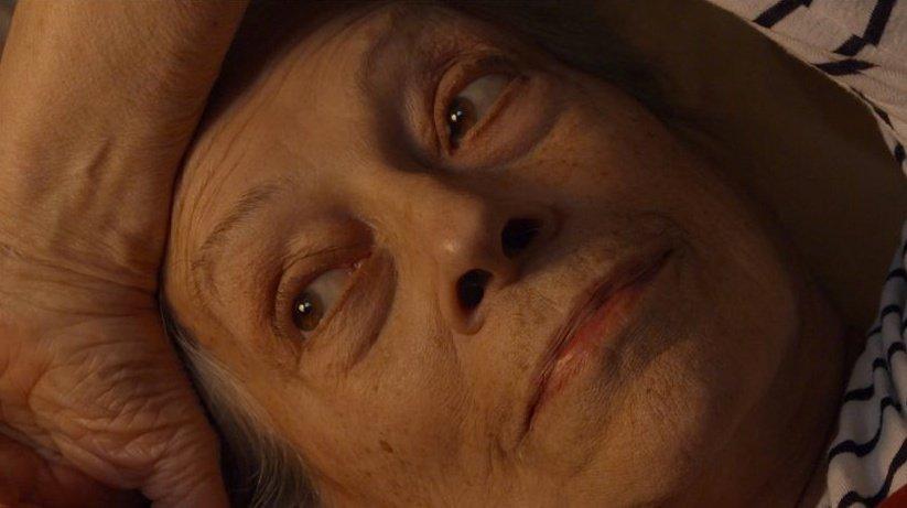 The Lives of Thérèse (2016)
