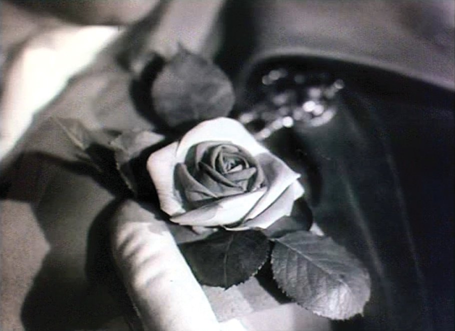 A Matter of Life and Death (1946): A rose in black and white…