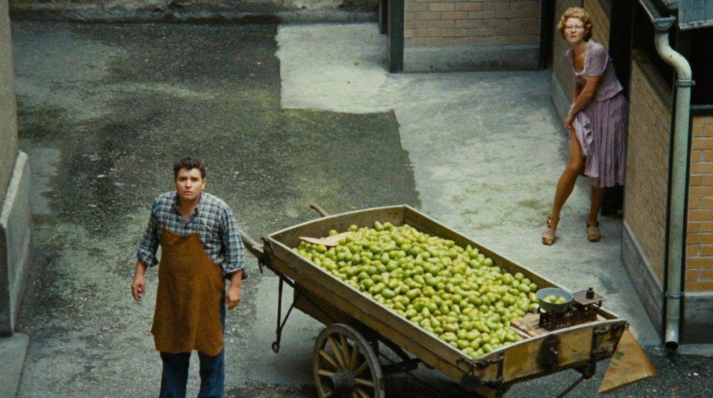 The Merchant of Four Season (1971)