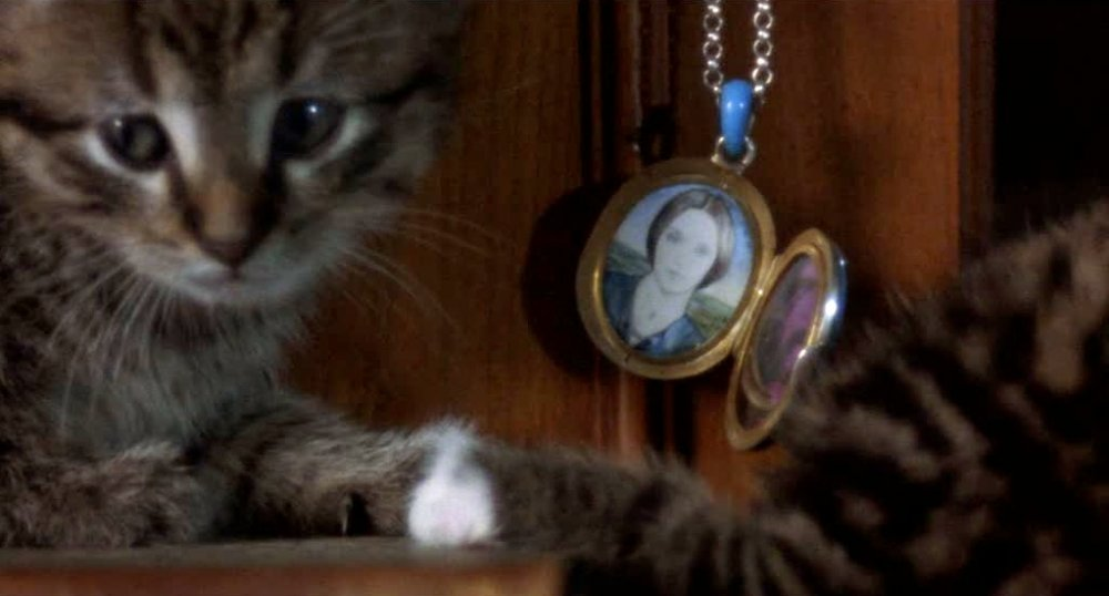 Cats at the home of Jonathan Harker in Nosferatu the Vampyre (1979)