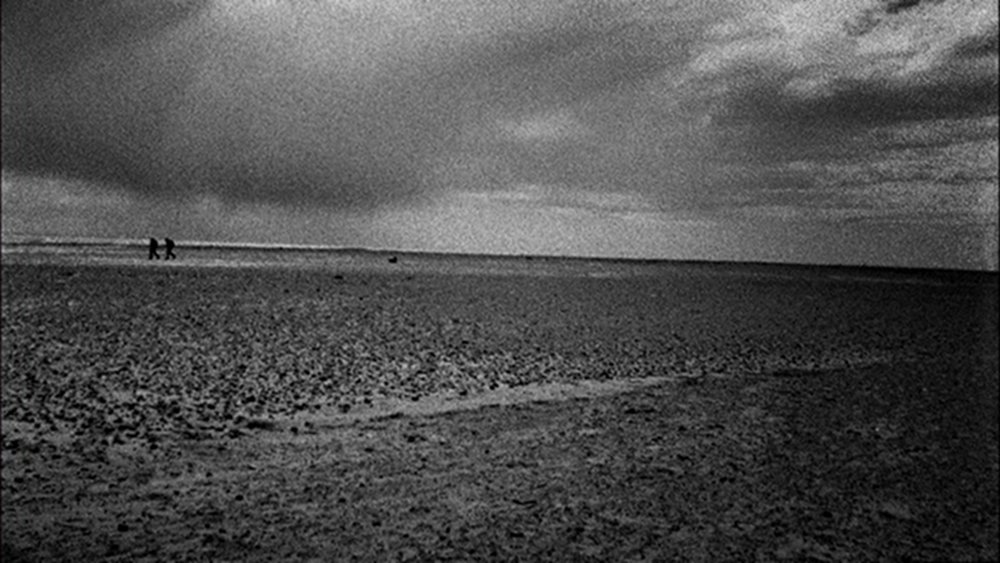 Patience (After Sebald) (2011)