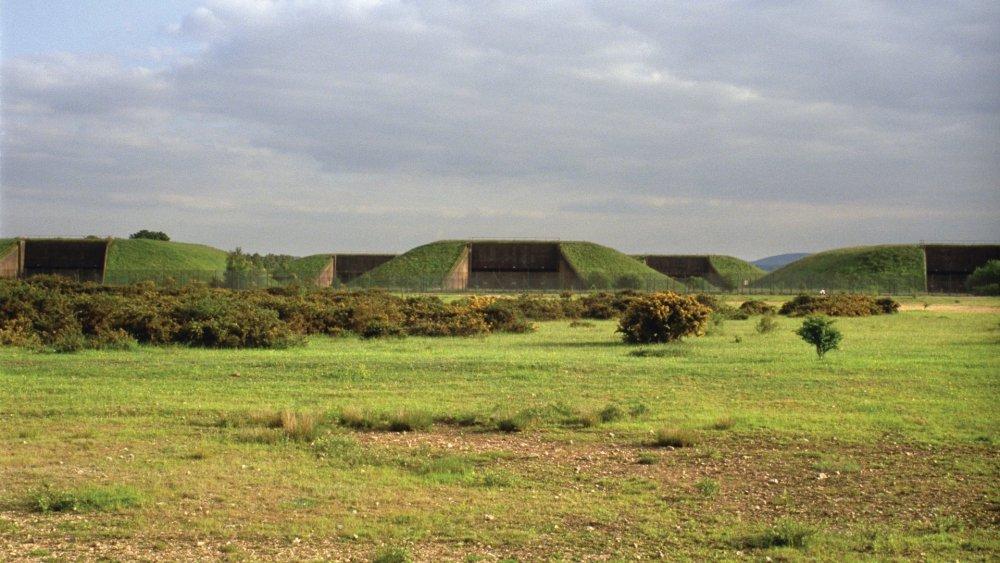 Robinson in Ruins (2010)