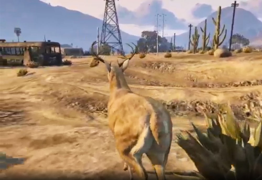San Andreas Streaming Deer Cam (2016)