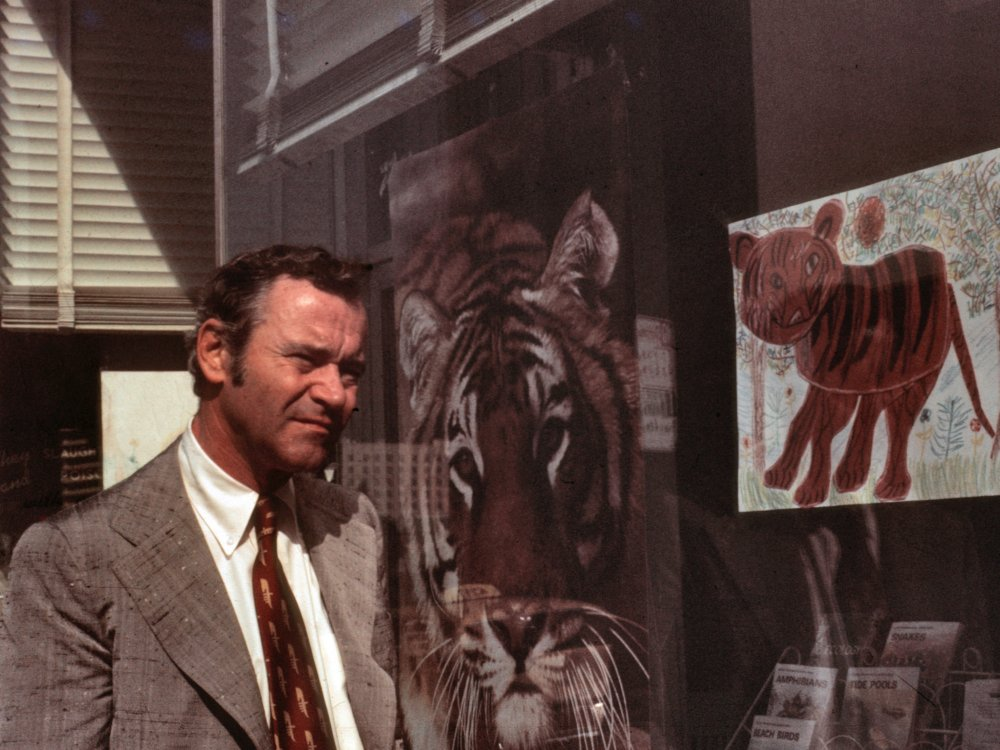 Save the Tiger (1973)