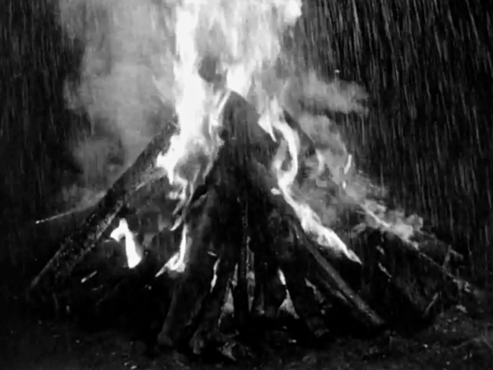 Rain doesn't appear for much of Seven Samurai's epic runtime, but when it rains, it pours, with a sudden deluge extinguishing the fires of the evening's revelling the day before the final battle