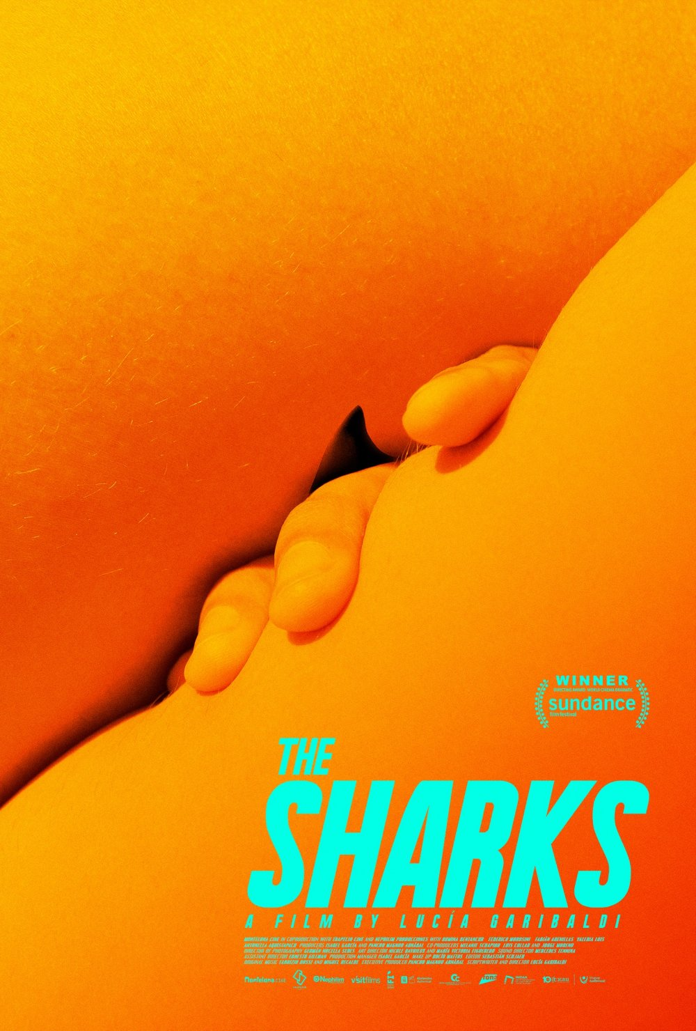 <strong>The Sharks</strong>  An intriguing coming-of-age tale is presented through the allegorical prism of an environmental incident