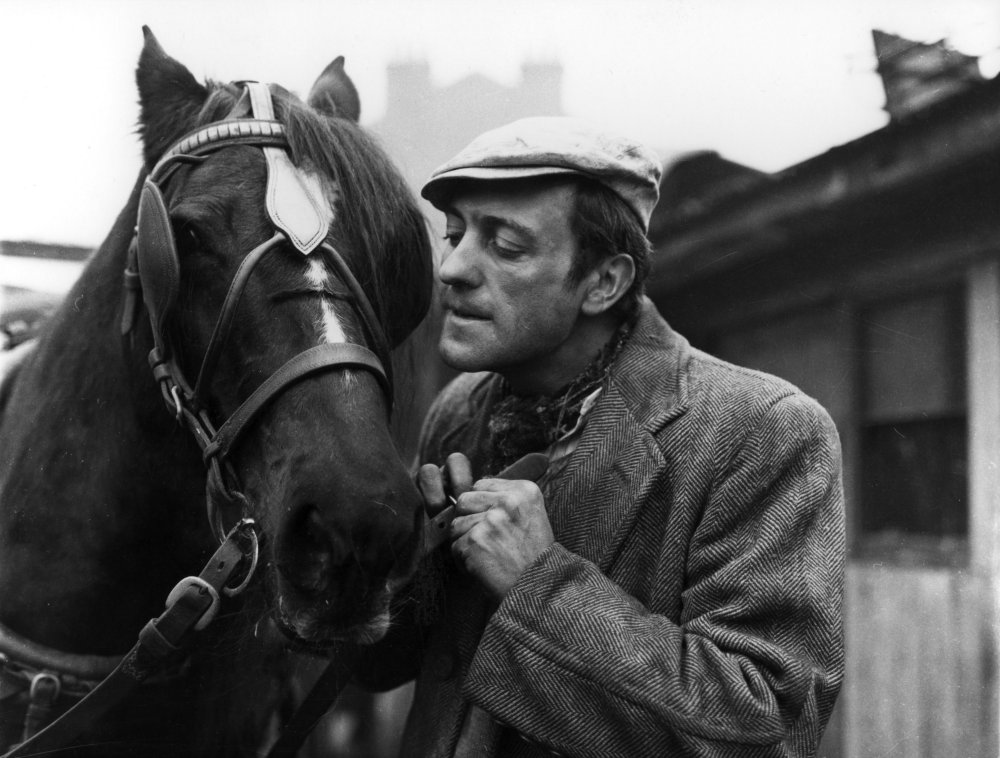 Steptoe and Son: The Offer (1962)