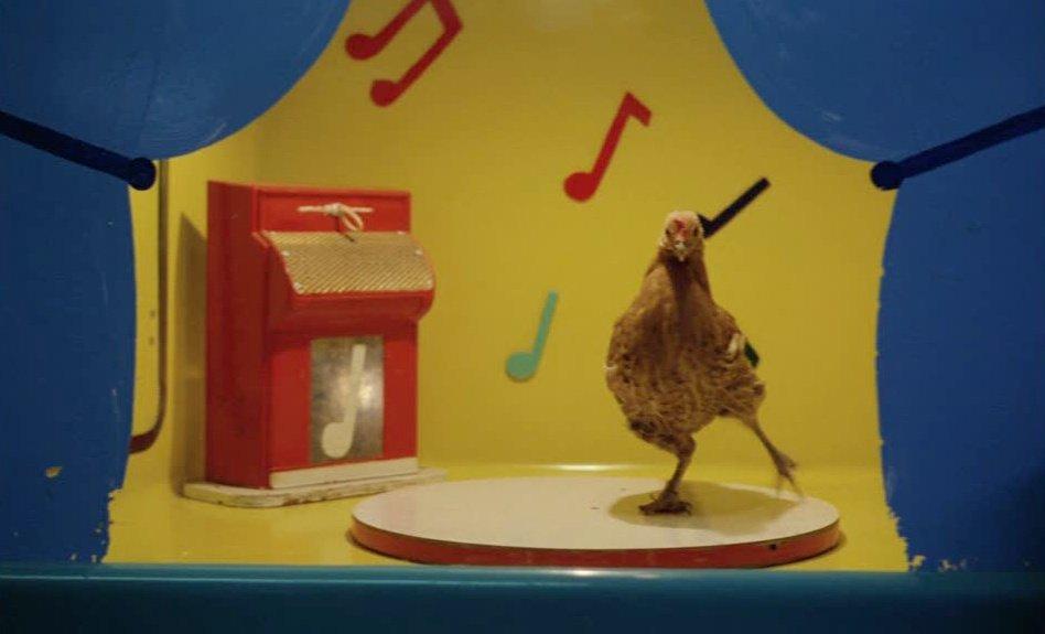 The dancing chicken in Stroszek (1977)