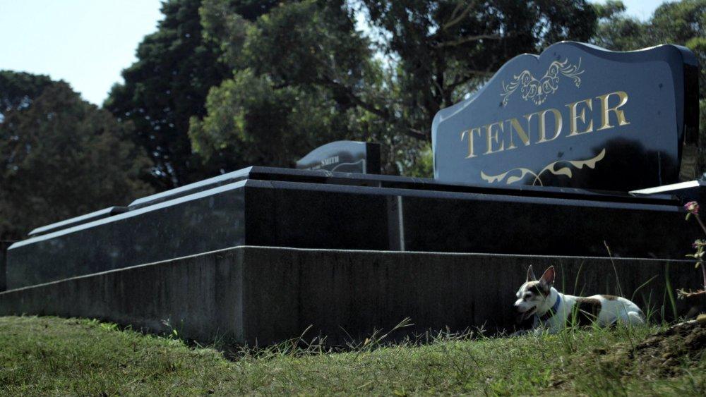 Tender (2014)