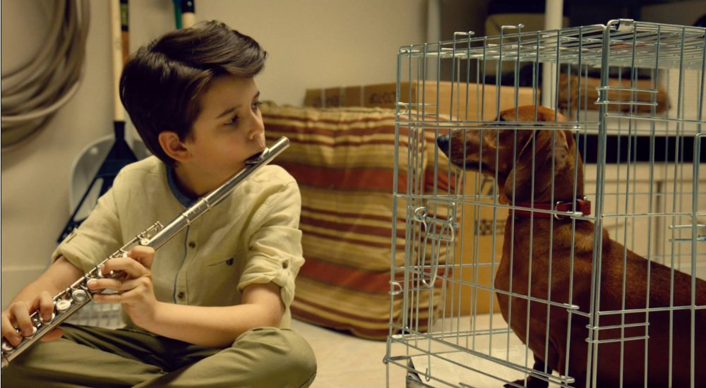 Mannered: Todd Solondz's Weiner-Dog, one of 11 feature exports Sundance London brought over from last January's parent festival in Utah