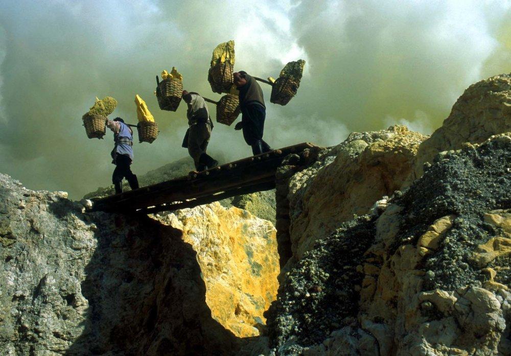 Workingman's Death (2005)