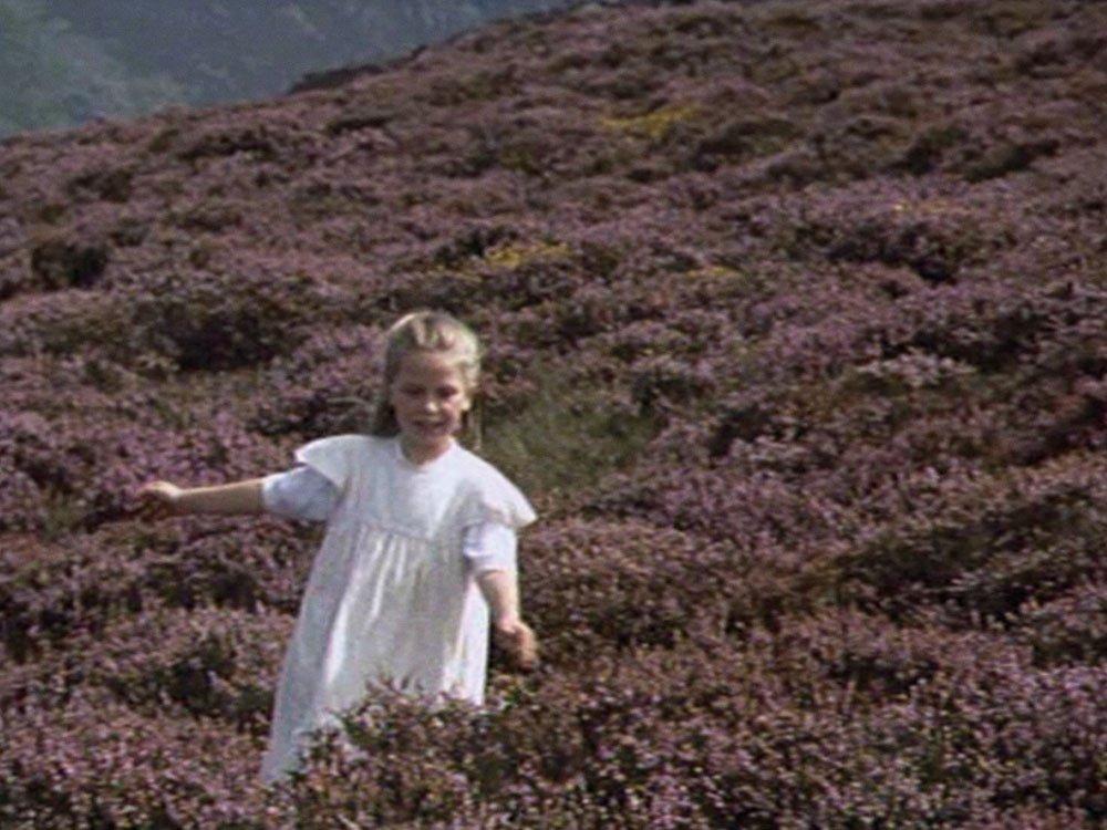 Y Mynydd Grug (Heather Mountain, 1997)