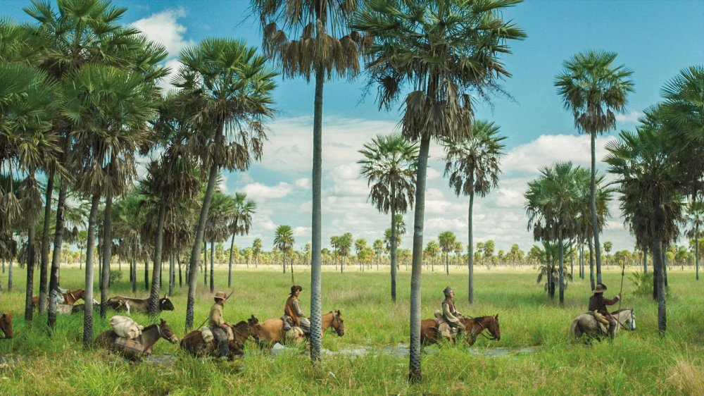 "Sight <span class=""amp"">&</span> Sound gala film Zama, Argentine director Lucrecia Martel's long-awaited return with a radical period drama"