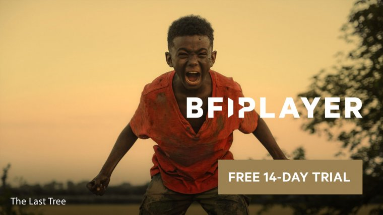 Birkenstock | Free People UK